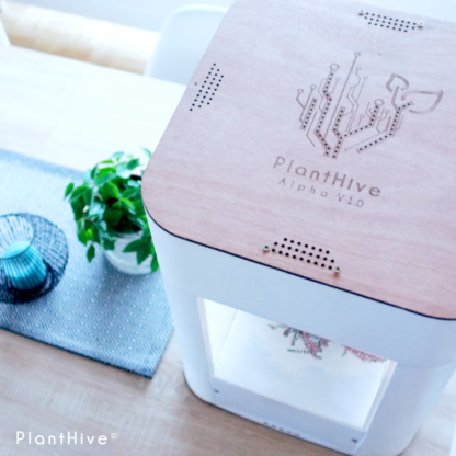 PlantHive - Regular 3