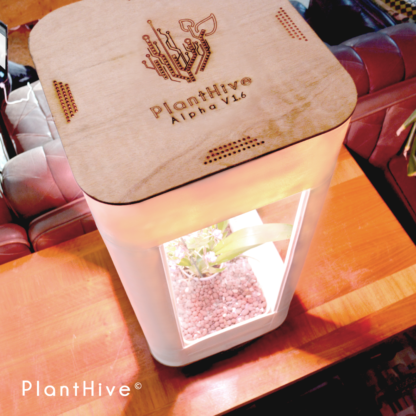 PlantHive - Extended 1