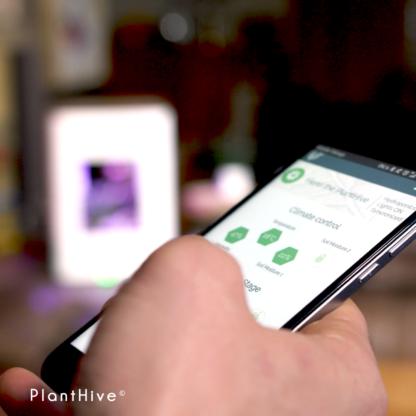 PlantHive - Regular App
